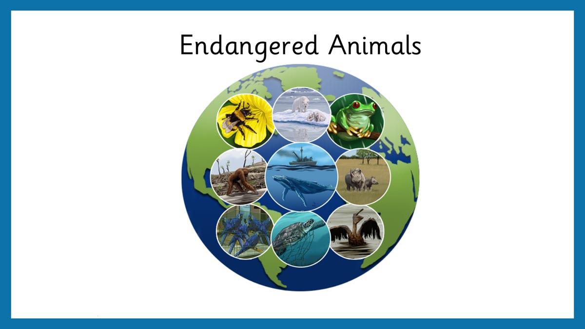 endangered_animals_header